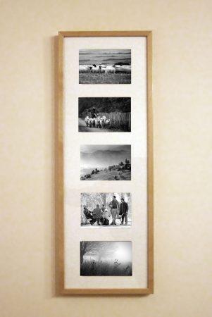 Ansamblu cinci fotografii