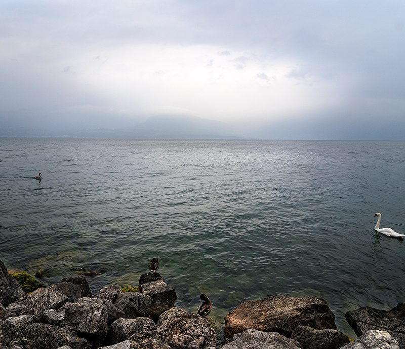 Morning On Lake Garda