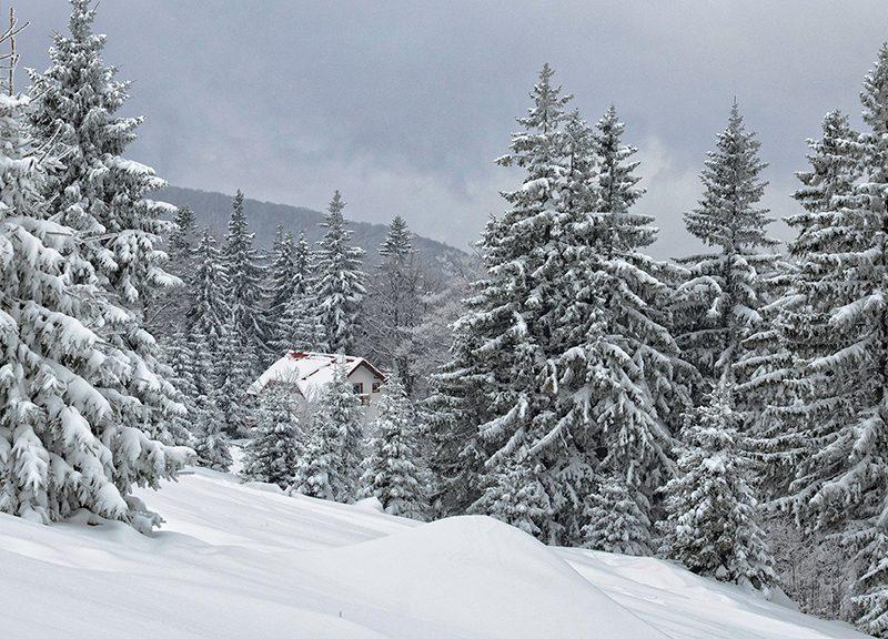 Winter at Straja